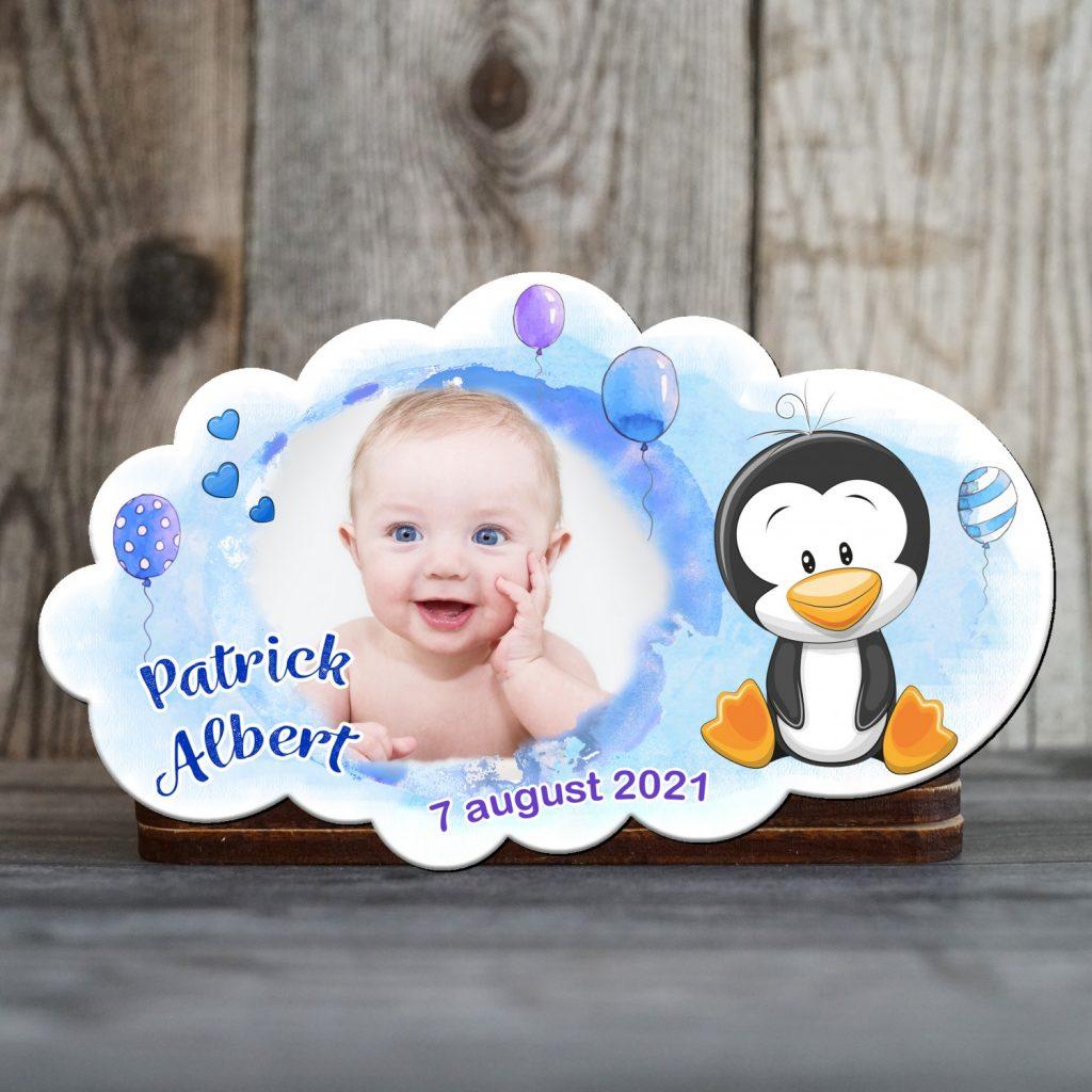 marturii magnetice pinguin